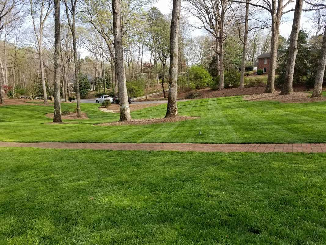 Residential & Commercial Groundskeeping Services